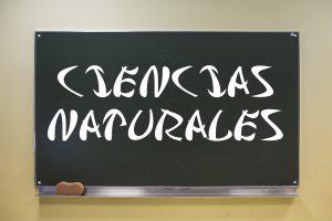 RESUMEN UNIDAD 6 MATEMÁTICAS 4º PRIMARIA SM. LOS DECIMALES