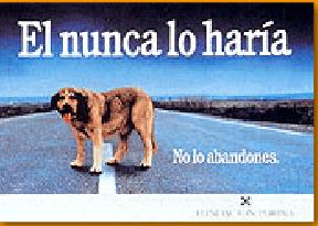 EL ANUNCIO. ACTIVIDAD INTERACTIVA ONLINE