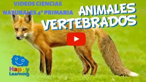 CIENCIAS NATURALES 4º PRIMARIA. VIDEOS